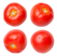 Set Of Tomato Isolated On White Background