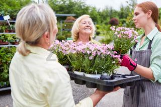 Frau bei Ausbildung zur Floristin als Azubi in Gärtnerei