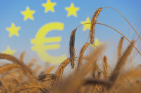 Agriculture subsidies in Europe
