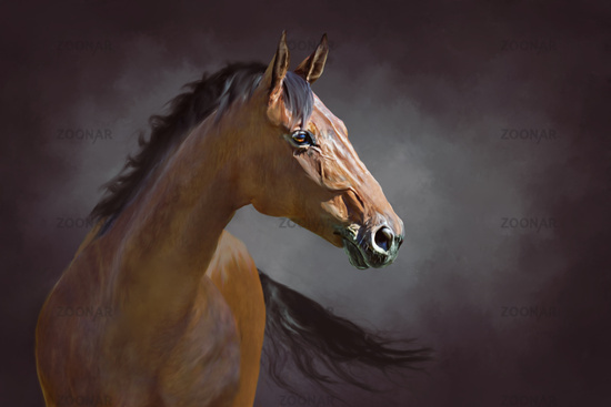 a red horse