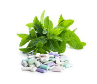 Different mint chewing gum pads and green mint leaves