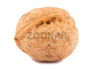 Single walnut
