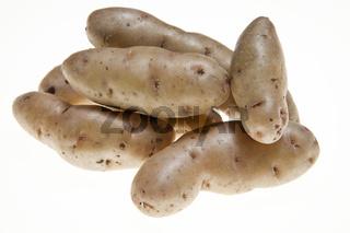 Kartoffeln der Sorte Bamberger Hörnchen