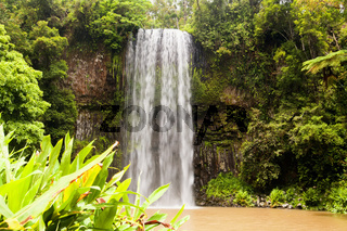 Millaa Millaa Falls in Queensland
