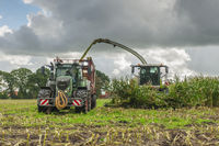 Corn harvest vehicles fronta