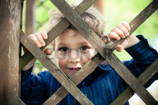 little boy behind the fence