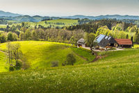 Traditional Black Forest farm house, Baden-Wuerttemberg, Germany