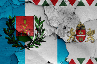 flags of District XV. and Budapest painted on cracked wall