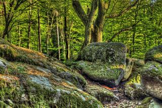 Naturdenkmal Lindenstein