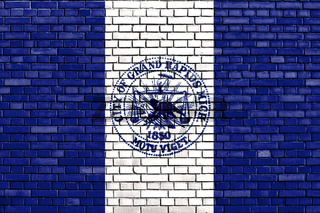 flag of Grand Rapids, Michigan painted on brick wall