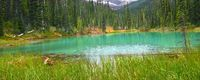 Yoho National Park Pond