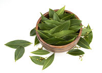 Bay leaves in wooden bowl, top view