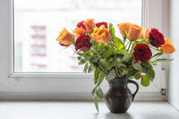 red and yellow rose flowers in jug on window sill