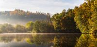 Lake fog landscape with Autumn foliage and tree reflections in Styria, Thal, Austria. Autumn season theme.