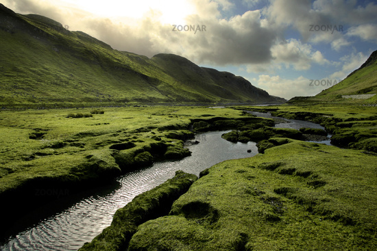 Green Scotland Valley in Spring