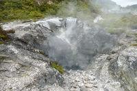 Geothermal Valley Te Puia
