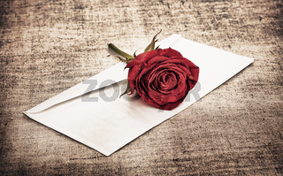 Red Rose and Letter