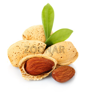 Almonds with kernels isolated on white