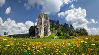 Flower meadow in the castle stone rock with Dollns