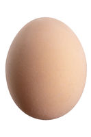 Large picture of an isolated egg with a white background.