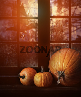 Different sized pumpkins in window