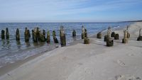 Old wooden stakes on the beach