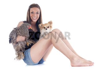 girl, chihuahua and chicken