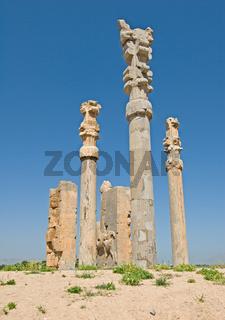 Columns of ancient city of Persepolis