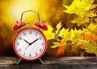 Vintage red alarm clock against the background of yellow autumn maple leaves