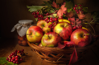apples and viburnum