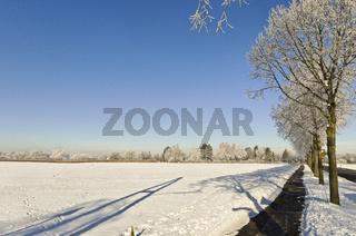 Winter an Niederrhein