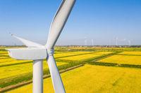 wind turbine closeup in autumn paddy field
