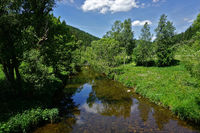 The Breg in the southern Black Forest, Germany