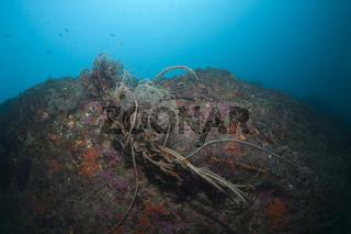 Verlorenes Fischernetz im Riff