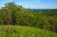 Dnipro river blossoming shores summer landscape, Trakhtemyriv historical hilly peninsula on Kaniv water Reservoir Cherkasy Region, Ukraine.
