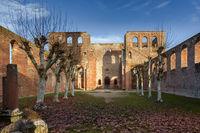Ruins of Limburg Abbey Bad Duerkheim, Rhineland-Palatinate, Germany