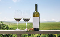 Red wine bottle, grape vine, glasses and cork