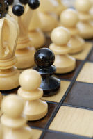 Depiction of a minority. Black pawn in white pawn line-up.