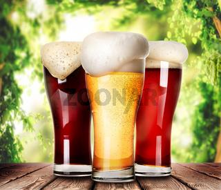 Mugs of light beer
