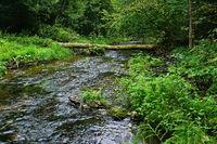 Premium hiking trail