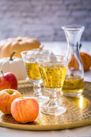 Apple cider with fresh apples and pumpkins for Thanksgiving and autumn
