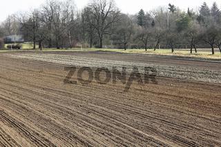 Zur Aussaat vorbereitetes Ackerland im März