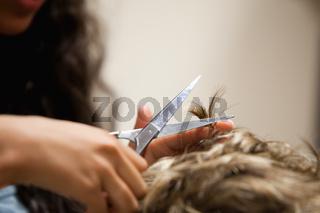 Close up of feminine hands cutting hair