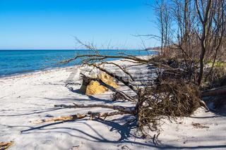 Strand an der Küste der Ostsee auf der Insel Poel