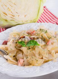 tasty braised cabbage vegetables