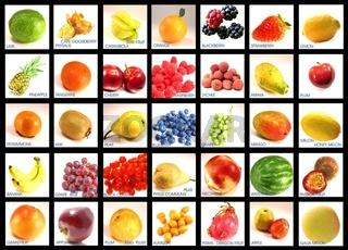Fruchtsorten klassifiziert englische Beschriftung