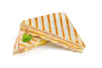 Hot sandwich with ham and cheese