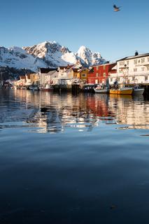 Winter im Hafen von Henningsvaer