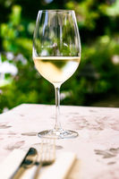 White wine in luxury restaurant on summer garden terrace, wine tasting experience at winery in the vineyard, gourmet tour and holiday travel
