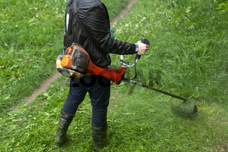 Mows the grass with a hand-held lawn mower. The gardener is cutting the lawn.